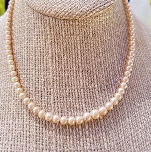 Jewelry - Graduated Cultured Pearls